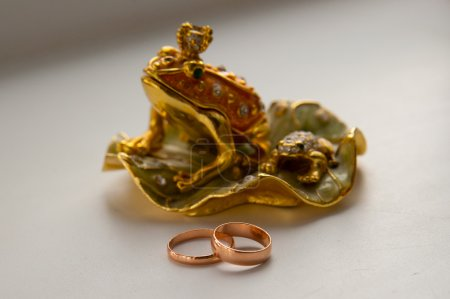Wedding rings and frog statue