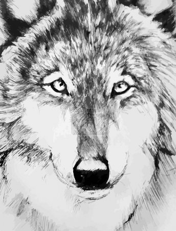 black-white painted wolf