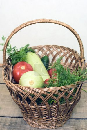 fresh vegetables, cucumbers, squash, tomatoes and fennel in a wicker basket on wooden background
