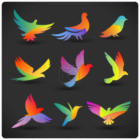 Photo for Set of colorful flying birds logo elements. Rainbow silhouettes on dark. - Royalty Free Image