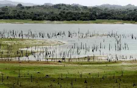 Madden lake, Metropolitan Natural Park, Panama