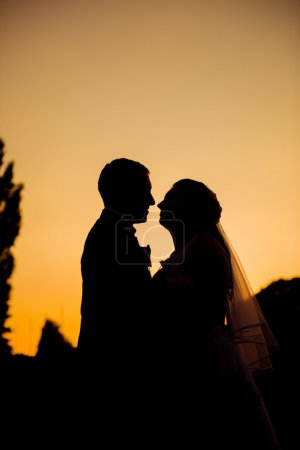 Silhouette of newlyweds kissing at sunset