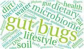 Gut Bug Word Cloud