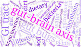 Gut-Brain Axis word cloud on a white background