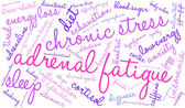 Adrenal Fatigue word cloud on a white background
