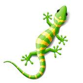 Gecko Vector No Mesh tool