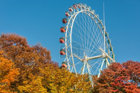 Brightly colored Ferris wheel
