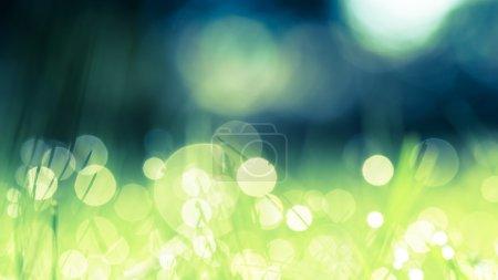 Photo pour Herbe verte avec des gouttes d'eau du matin. Beau fond d'été avec bokeh et fond flou. Faible profondeur de champ . - image libre de droit
