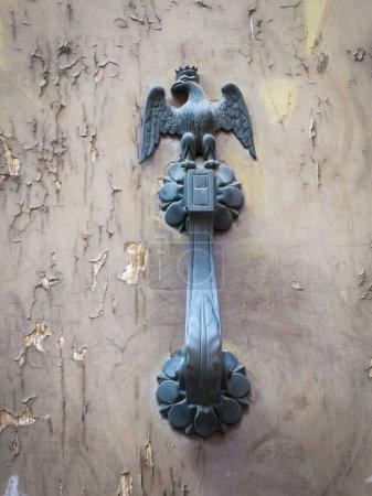 Eagle symbol door handle