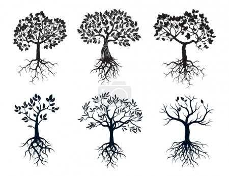 Illustration for Set of Black Trees and Roots. Vector Elements. - Royalty Free Image