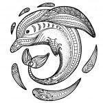 Zentangle stylized image of totem animal: dolphin....