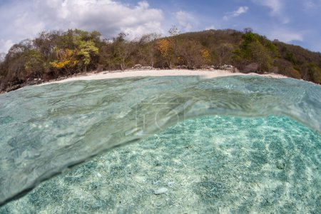 Clear Waters, Beach, and Remote Island