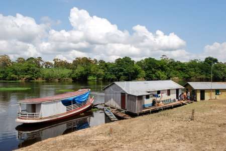 Amazon rainforest: Expedition by boat along the Amazon River near Manaus, Brazil South America