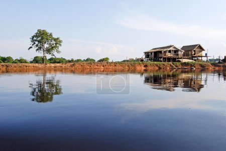 Amazon rainforest: Settlement on the shore of Amazon River near Manaus, Brazil South America