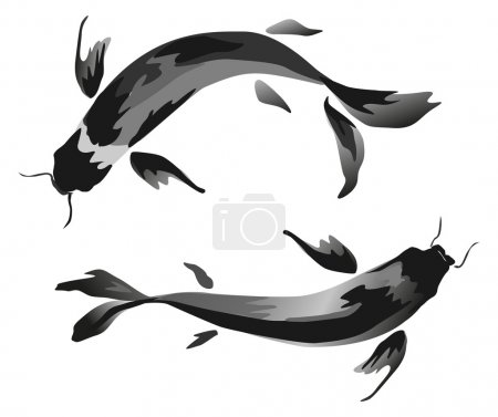 Illustration for Ink Koi carp illustration. Vector image. - Royalty Free Image