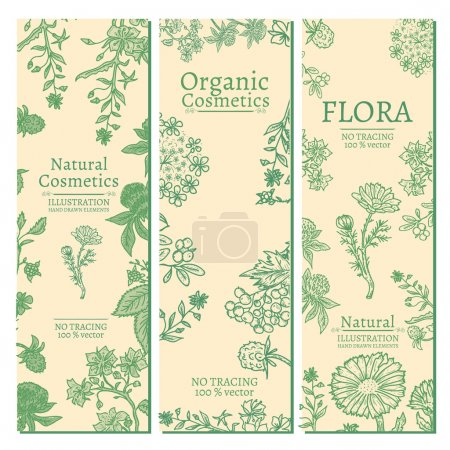 Illustration for Elegant banners herbs and flowers hand drawn vintage sketch vector illustration - Royalty Free Image