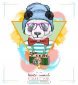 Portrait of fashion panda hipster animals