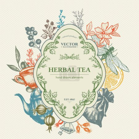 Illustration for Herbal tea herbs and flowers botanical decorative vintage background hand drawn ink vector - Royalty Free Image