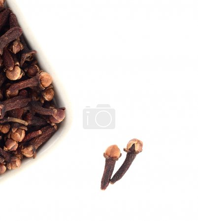 Cloves in plate isolated on white background
