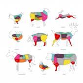 Butcher shop concept vector illustration Meat cuts Animal parts diagram of pork beef lamb duck chicken rabbit