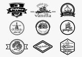 Spice logo set in vintage style Vector hand drawn spice logotypes collection