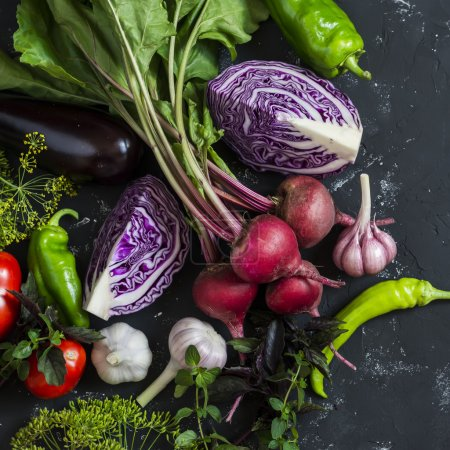 Fresh vegetables - red cabbage, beets, eggplant, peppers, garlic, tomatoes, herbs on a dark background. Raw ingredients. Food background