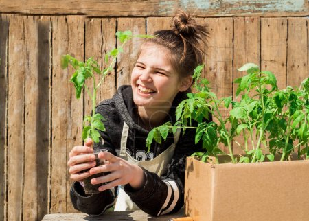 Photo for Cute teen girl caring for seedlings on a wooden background. Planting plants in the soil. Seedlings of tomatoes in the country.small sprouts in a craft box. - Royalty Free Image
