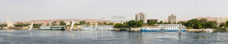 panoramic Nile shore