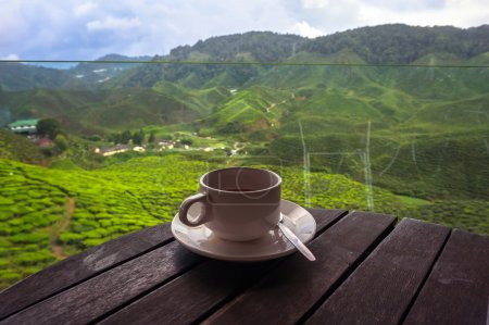 Photo for Cup of tea in the beautiful tea plantations in the mountains of Malaysia - Royalty Free Image