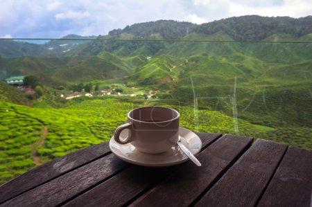 Photo pour Cuvette de thé dans les belles plantations de thé dans les montagnes de La Malaisie - image libre de droit