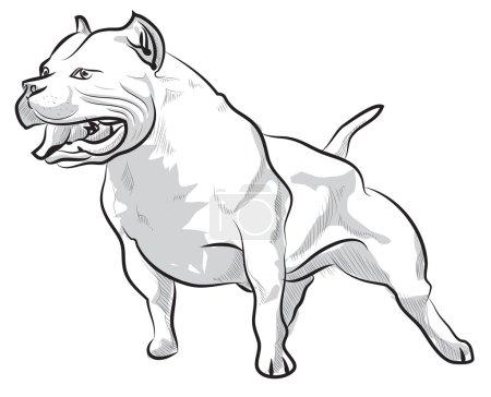 Vector bosquejo dibujo a mano ilustración pitbull ladridos