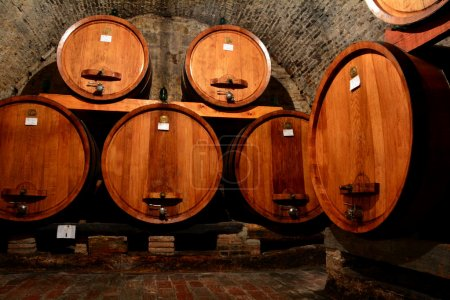 Wine barrels in the wine celllar