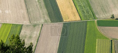 Freshly plowed and sowed farming land from above