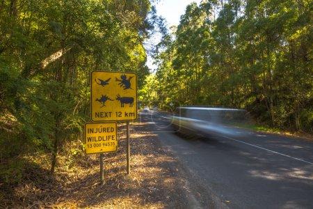 Photo pour Panneau d'avertissement modifié sur Monstres traversant la route forestière austalienne et excès de vitesse voiture . - image libre de droit