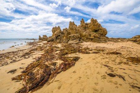 Anglesea Victoria