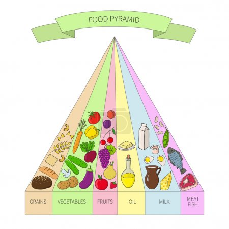 Photo for Health food pyramid.  illustration of Balanced diet - Royalty Free Image