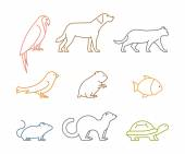 Colored line group of pets Silhouettes animals