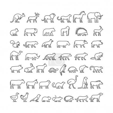 Vector line silhouettes of domestic, farm and wild animals