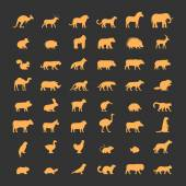 Gold silhouettes of australian african american and other animals Vector icon bear gorilla springbok squirrel panther fox hippo dromedary and others Open path