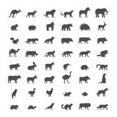 Black silhouettes of australian african american and other animals Vector icon ferret panther warthog mouse hedgehog cat dog and others Open path