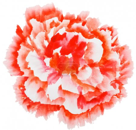Red peony flower. Watercolor painting. Styling Chinese painting.