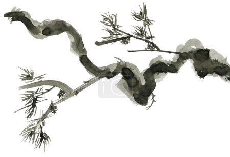 Photo pour Branche de pin isolée sur fond blanc. Dessin dans le style chinois. - image libre de droit