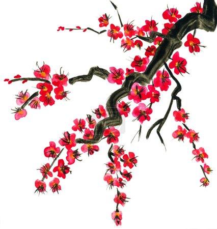 Photo pour Une branche d'un arbre fleuri. Fleurs roses de sakura. Peinture à l'aquarelle. Isolé sur fond blanc. - image libre de droit
