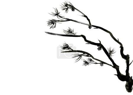 Photo pour Branches de pins isolés sur fond blanc avec un espace pour le texte... Dessin dans le style chinois. - image libre de droit
