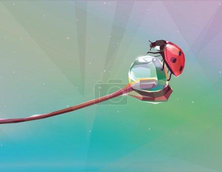 ladybug on  water drop