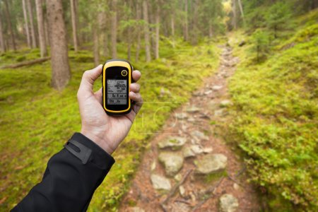 finding the right position in the forest via gps ( blurred backg
