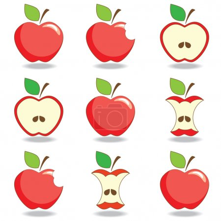 Apples. Set of red bitten and half of fruit with leaf. Vector il