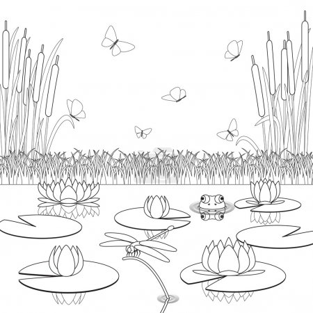 Coloring page with pond inhabitants and plants.