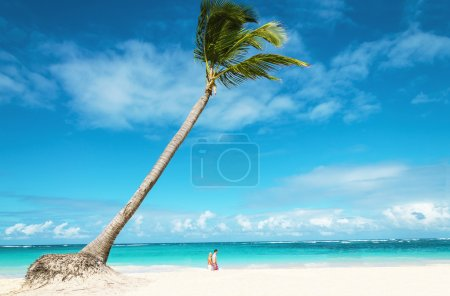 Beach with people and palm trees