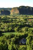 Valle de Vinales with mogotes in Cuba